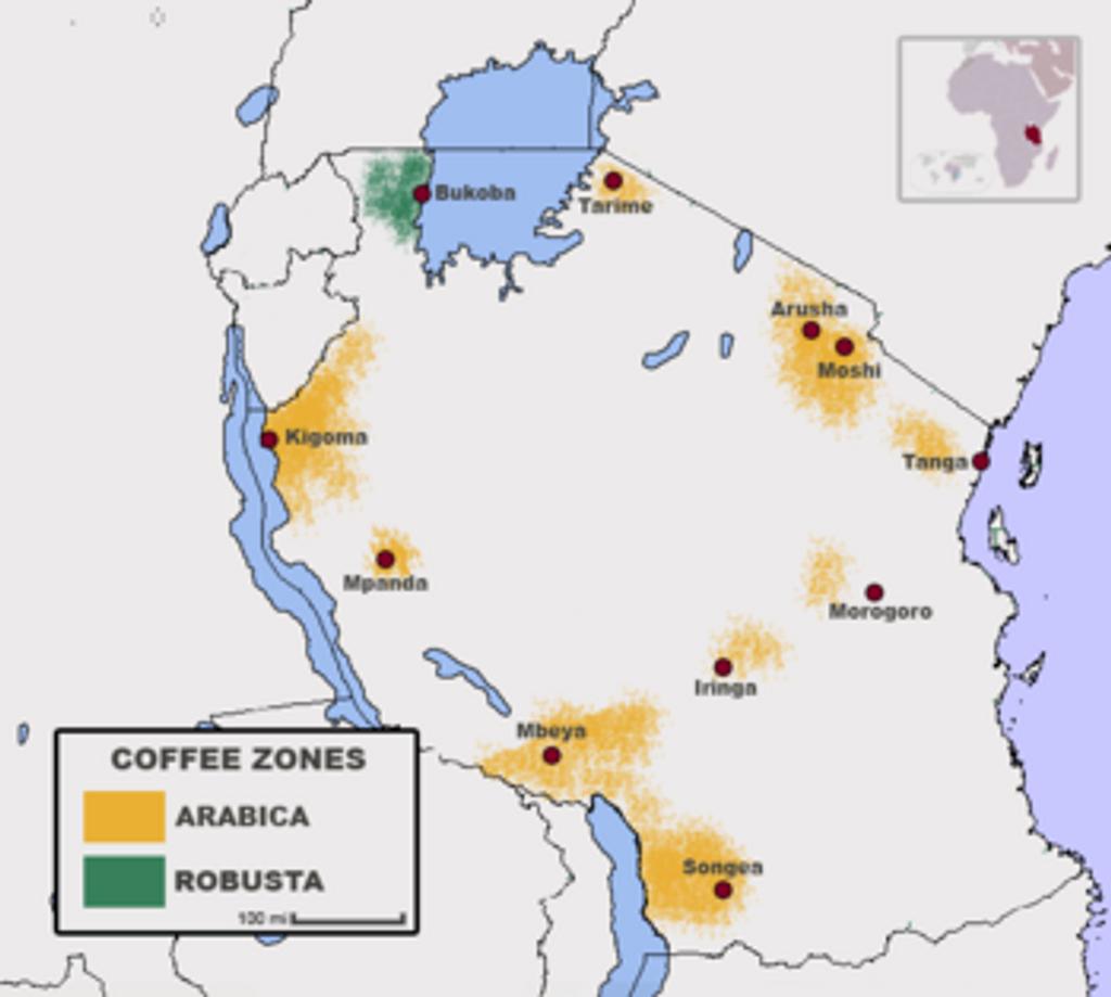 Tanzania Peaberry Ruvuma
