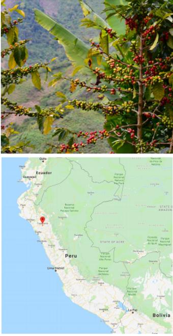 Peru Organic Fair trade