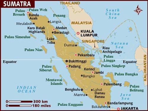 Sumatra Mandheling Organic