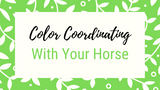 The Ultimate Guide to Color Coordinating with Your Horse