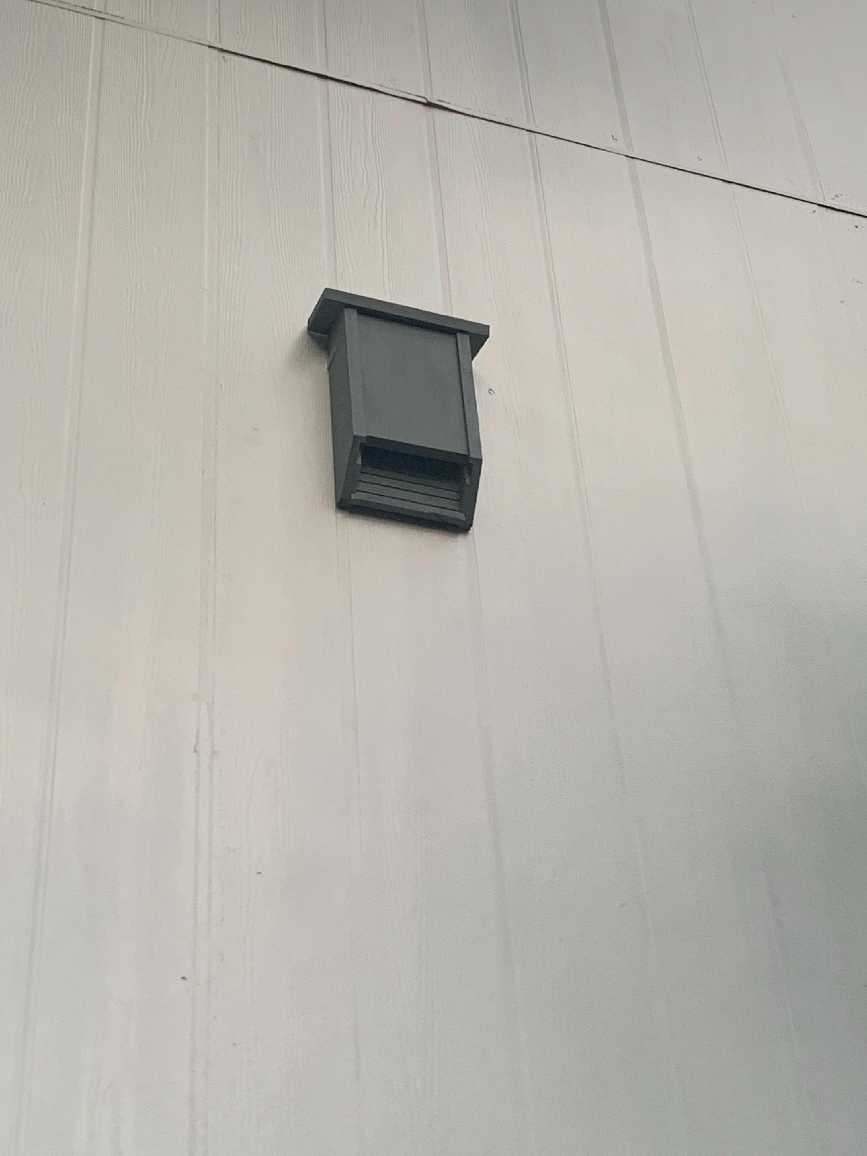 Cedar Bat House Install