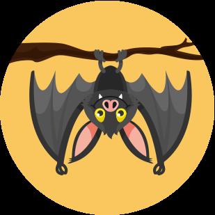 Cedar Bat House