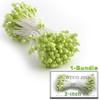 Pearl Stamen, 2-in, 3mm, 144-pc, Lemon Lime Green