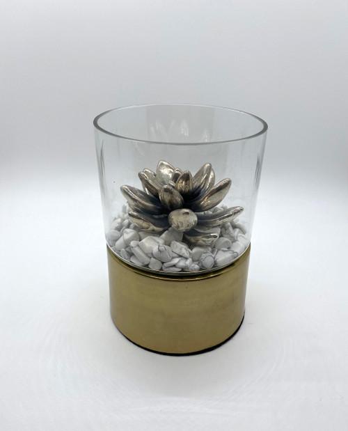 JCVT silver succulent