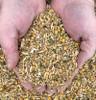New Country Organics Corn-Free Layer Feed, 50lb Bag