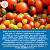 Bloom & Root Natural Tomato Formula Fertilizer 3-3-3, 4 Lbs