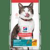 Hill's Science Diet Adult 11+ Indoor Dry Cat Food
