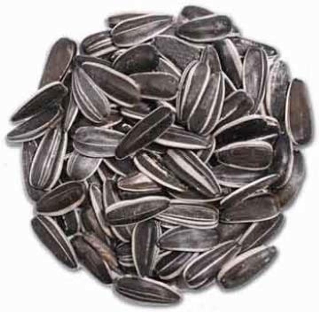 Bulk Striped Sunflower Seed