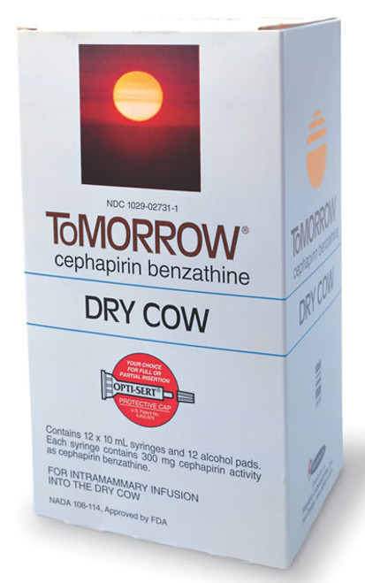 Tomorrow Mastitis Dry Cow Tube 10 ML