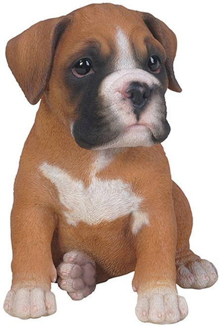 Nature's Gallery Cannie Pals Boxer