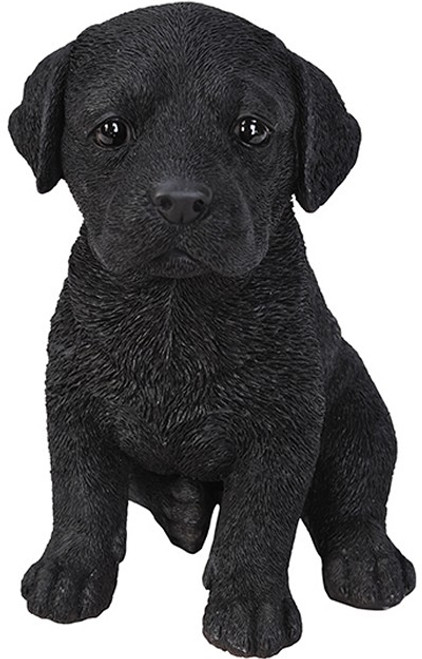 Nature's Gallery Cannie Pals Black Lab