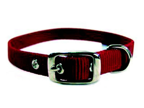 Hamilton Single Thick Deluxe Red Nylon Buckle Collar 5/8 x 18 Inch