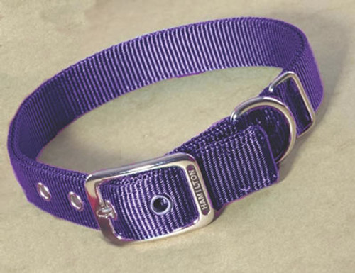 Hamilton Double Thick Deluxe Purple Nylon Buckle Collar 1 x 20 Inch