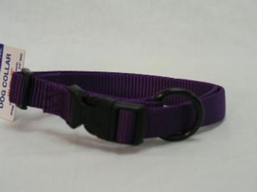 Hamilton Adjustable Dog Collar, 16-22 Inches, Purple