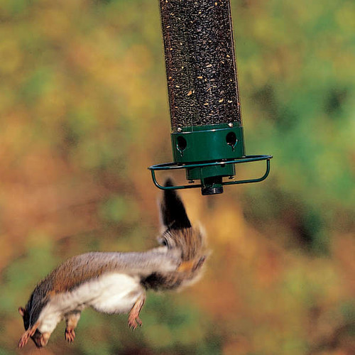 Droll Yankee Flipper Squirrel Proof Feeder
