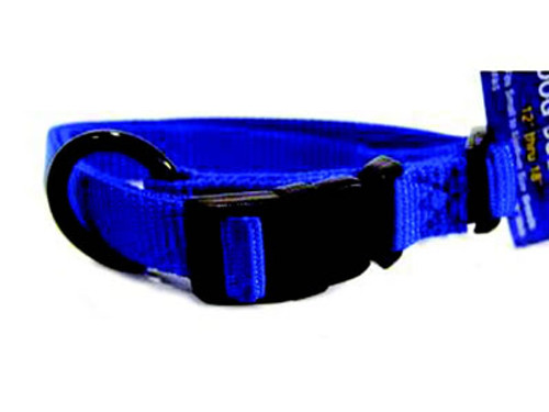 Hamilton Blue Nylon Adjustable Collar 5/8 x 12-18 Inch