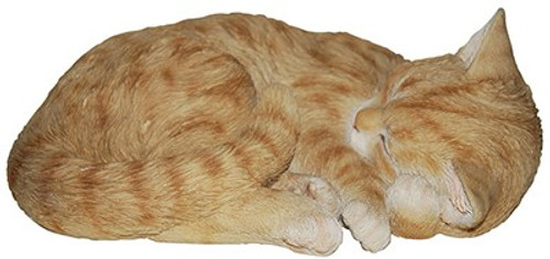 Nature's Gallery Sleeping Ginger Cat