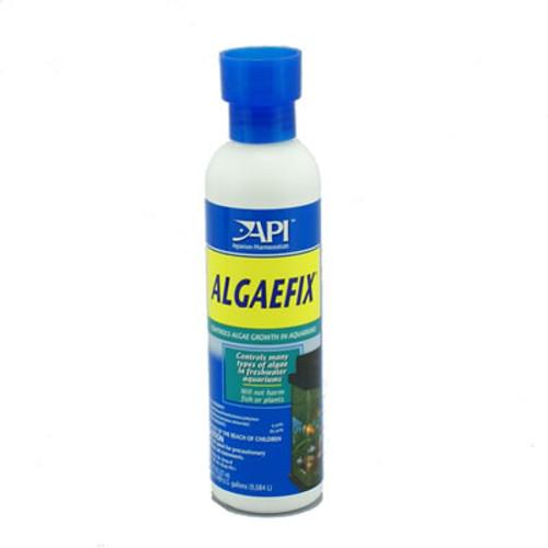 API Algaefix 8 Ounces