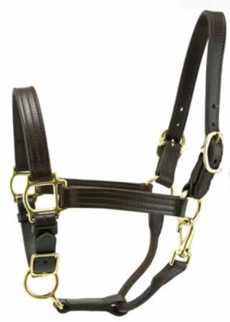 Leather Track Halter 1 Inch Cob, Brown