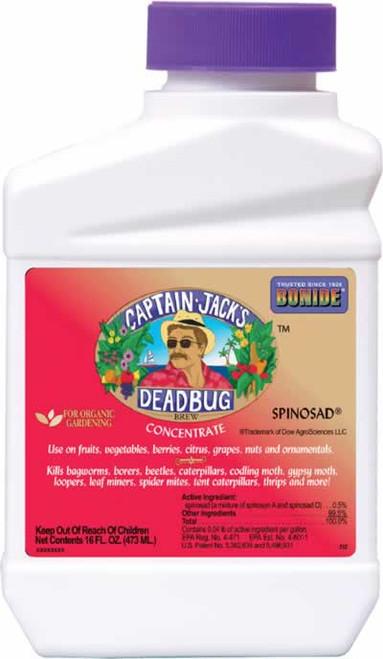 Bonide Captain Jack's Deadbug Brew Concentrate Pint
