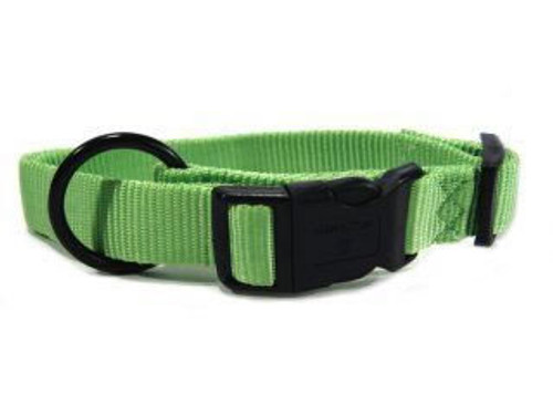 Hamilton Lime Nylon Adjustable Collar 1 x 18-26 Inch