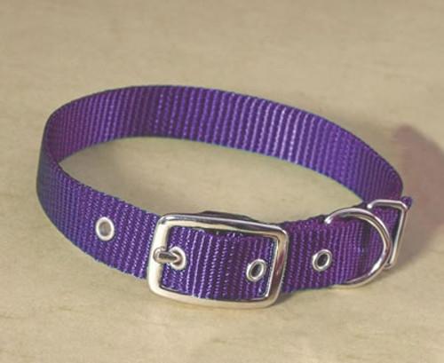 Hamilton Single Thick Deluxe Purple Nylon Buckle Collar 5/8 x 14 Inch