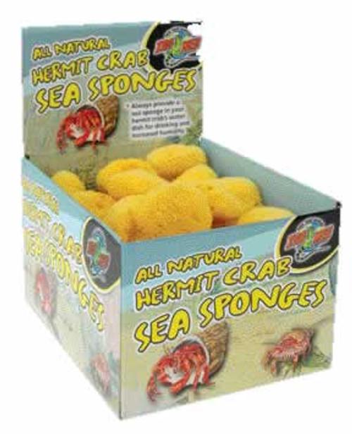 Zoo Med Hermit Crab Sponge 1