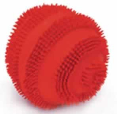 Coastal Rascals Latex Spiny Ball Dog Toy, 2.5 Inches