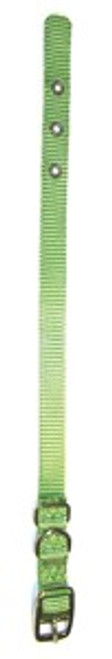 Hamilton Single Thick Deluxe Lime Nylon Buckle Collar 5/8 x 18 Inch