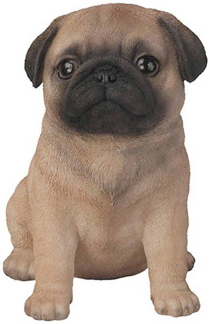 Nature's Gallery Pals Pug