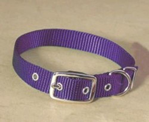 Hamilton Single Thick Deluxe Purple Nylon Buckle Collar 5/8 x 16 Inch