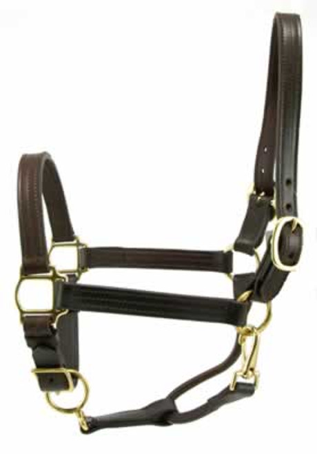 Leather Track Halter 1 Inch, Brown