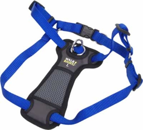Coastal Pet Walk Right Padded Front Dog Harness Blue