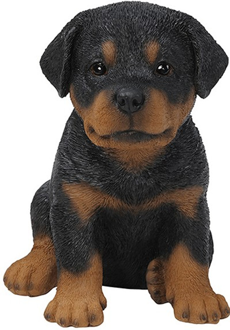 Nature's Gallery Cannie Pals Rottweiler