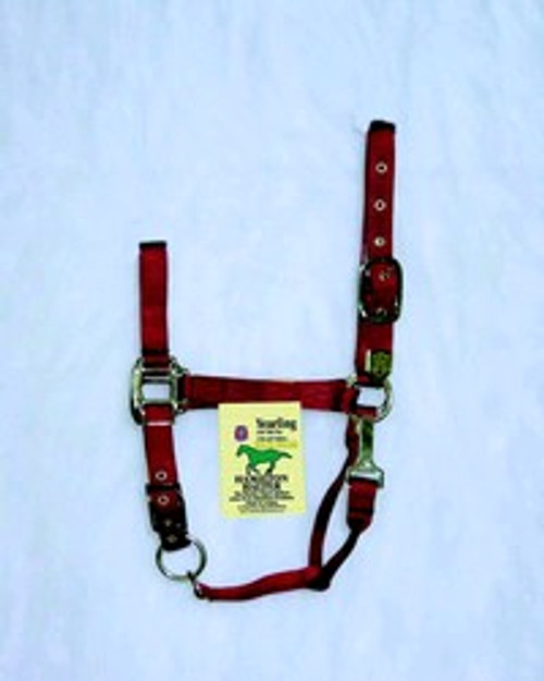Hamilton Red Nylon Halter With Snap, Yearling