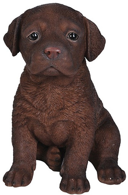 Nature's Gallery Cannie Pals Chocolate Lab