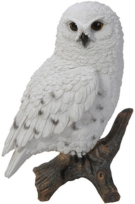 Nature's Gallery Snowy Owl