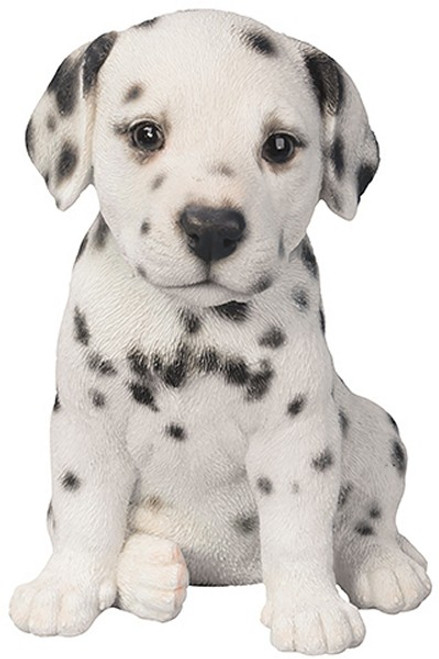 Nature's Gallery Cannie Pals Dalmatian