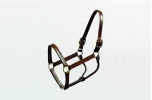 Leather Thoroughbred Halter 1 Inch Cob, Brown