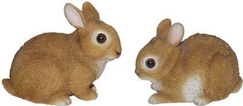 Nature's Gallery Baby Rabbit
