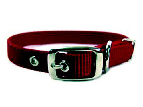 Hamilton Single Thick Deluxe Red Nylon Buckle Collar 5/8 x 16 Inch