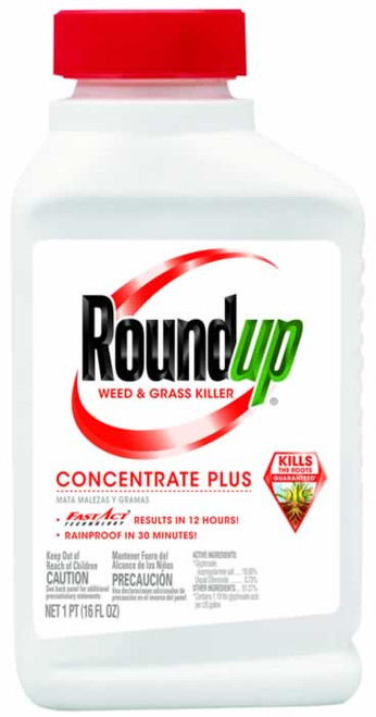 Roundup Weed & Grass Killer Concentrate Plus 16 Ounce