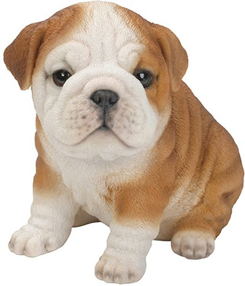 Nature's Gallery Cannie Pals Bulldog