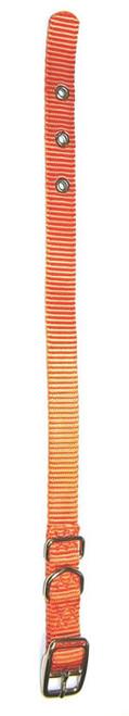 Hamilton Single Thick Deluxe Mango Nylon Buckle Collar 5/8 x 18 Inch