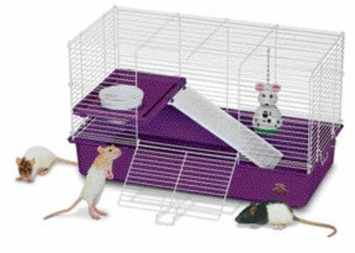 Super Pet My First Home For Pet Rats