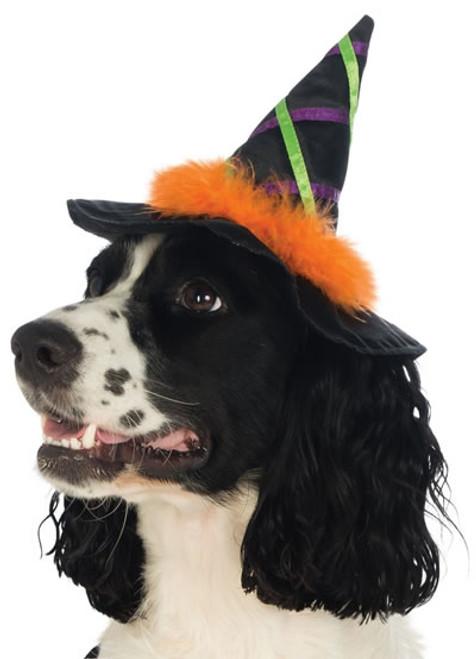 Rubie's Costume Star Witch Hat With Trim