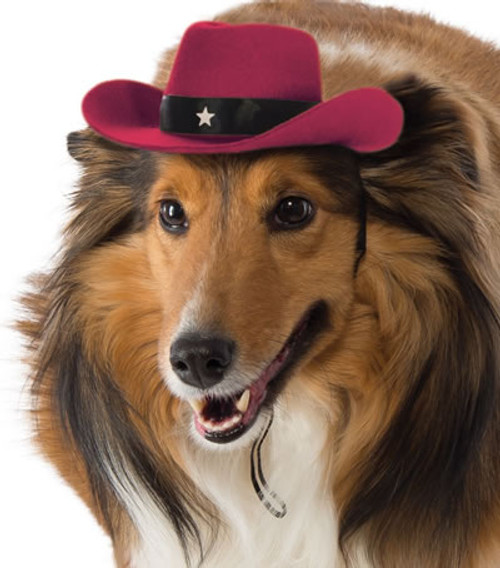 Rubie's Costume Company Cowboy Hat Red