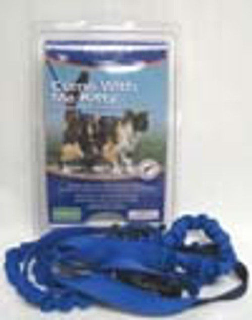 Come With Me Kitty Harness & Bungee Leash, Medium, Royal Blue