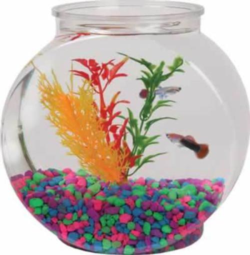 Drum Plastic Fish Bowl 1/2 Gallon