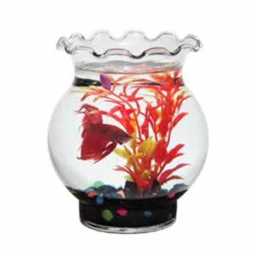 Glass Betta Bowl 1 Pint